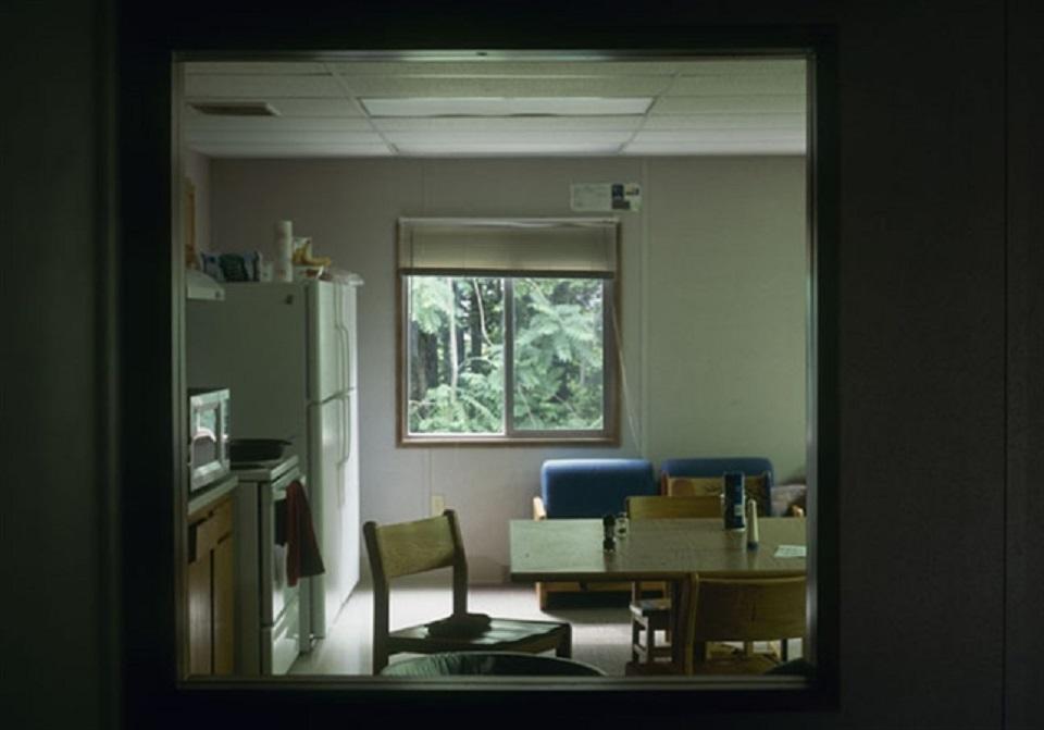 Margot Quan Knight – Dorm Plants