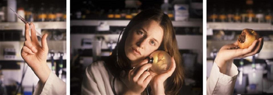 Margot Quan Knight – Lab (Procreation)