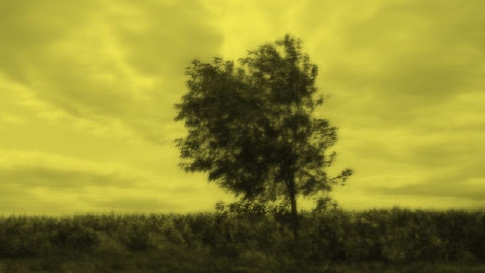 Davide Coltro -Medium Color Landscapes 090703