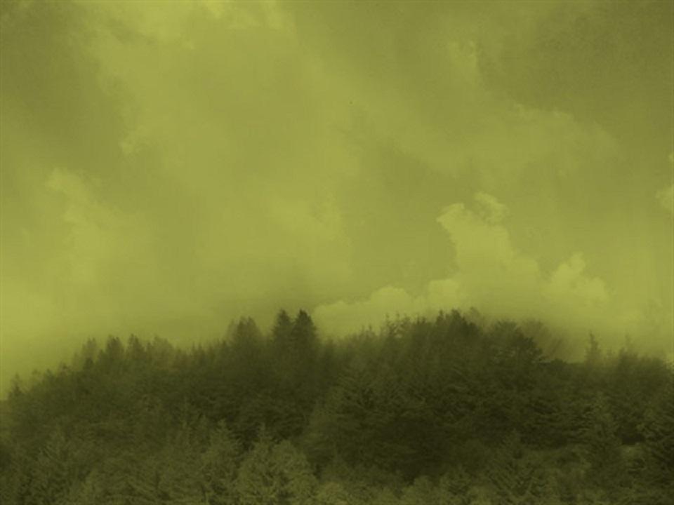 Davide Coltro -Medium Color Landscapes