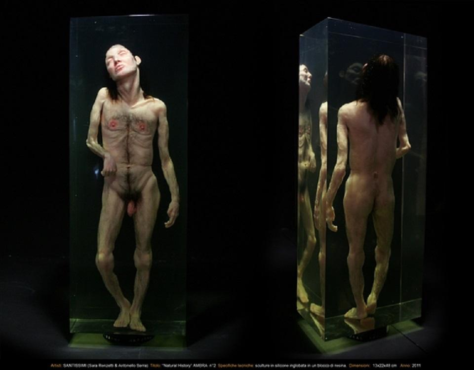 Santissimi – Natural History Ambra n. 2
