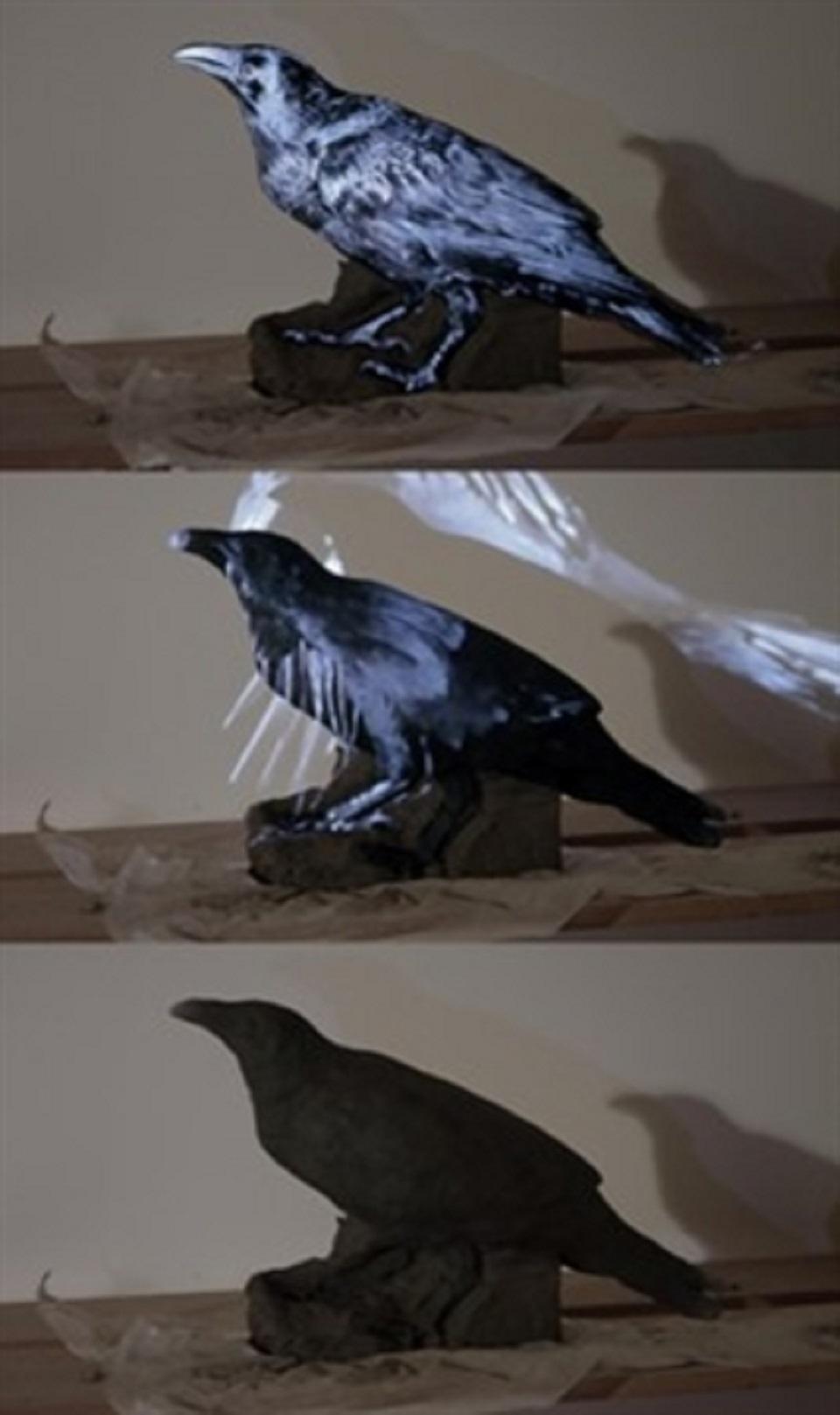 Glazer/Kunz – Raven III
