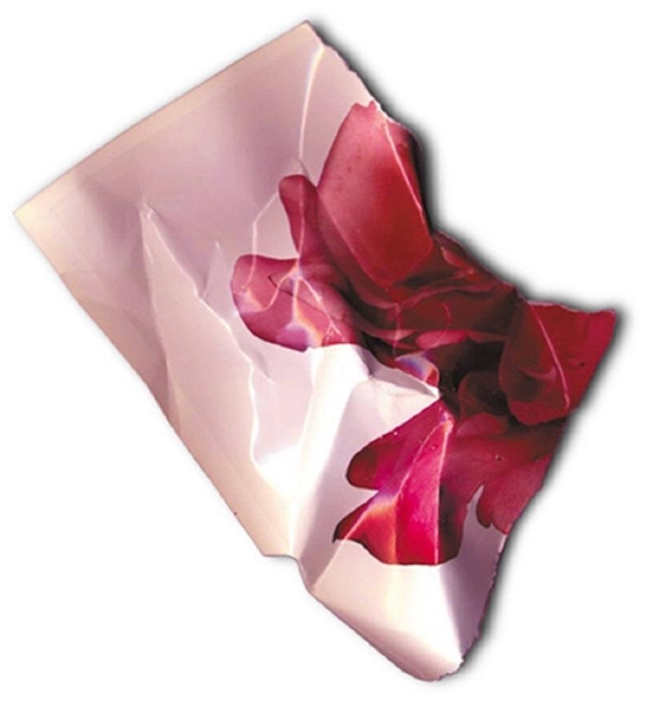 Marco Silombria – pezzi rosa