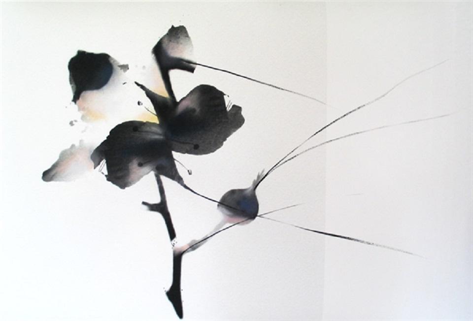 Stefania Ricci – Res Naturae g.c. 002